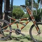 Bambucicleta | La bicicleta sustentable