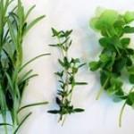 Huertas Urbanas: Las plantas aromáticas en nuestra cocina