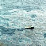 Riesgo Ambiental: Derrame de petróleo en Brasil
