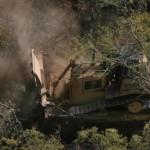 Arduo camino a la Ley de Bosques