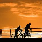 Movilidad Sustentable: Eficiencia Energética