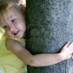 Los Arboles: Pulmones del planeta