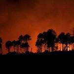 Incendio en Patagonia chilena