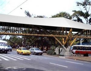 puente-bambú