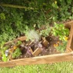 Huertas Urbanas: ¿Como hacer una Huerta en el balcón?
