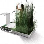 ECO-DUCHA: Reciclado del agua de la ducha con Plantas
