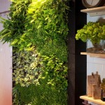 Jardines Verticales de Plantas Comestibles… en tu cocina!