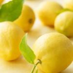 Mujeres sustentables: Desintoxicación y Propiedades del Limón