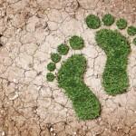 7 de julio: Día Nacional de la Conservación del Suelo