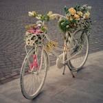 ¡Una nueva vida para tu bicicleta: Reciclaje y Reutilización!