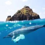¿La solución a la contaminación marina?