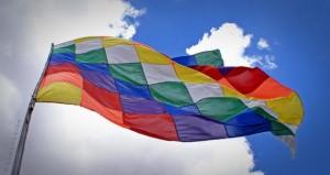 Bandera de los Pueblos Originarios
