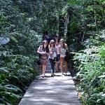 Brasil: Conferencia Internacional de Estudiantes en Sustentabilidad Urbana 2015