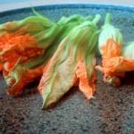 Alimentación Consciente: ¿Que es y como se come la Flor de Calabaza?