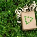 10 Consejos para festejar la navidad de manera sustentable