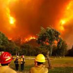 Incendios forestales en Chubut: la lluvia trajo alivio