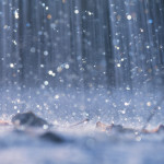 Diseño Sustentable: Reutilización del Agua de lluvia