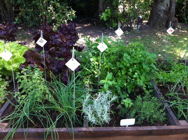 Carteles en la Huerta orgánica