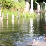 Colecta para los damnificados de las inundaciones en el Litoral Argentino