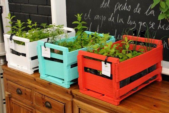 Huerta en cajones de verdura