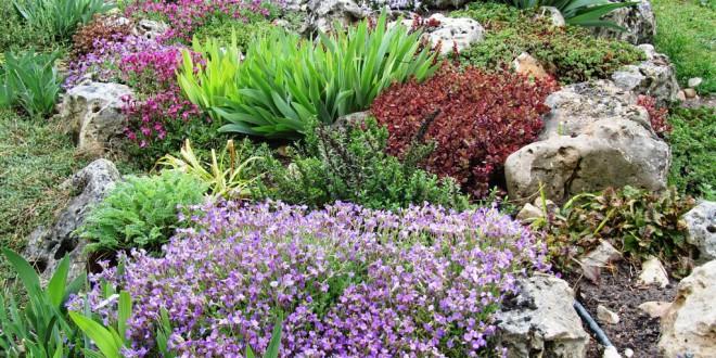 Tips ECO para tener un Jardín Sustentable