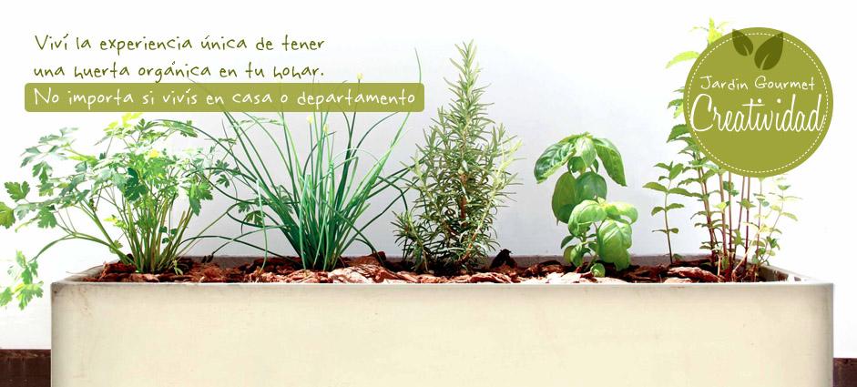 Regala Huerta por jardín Gourmet