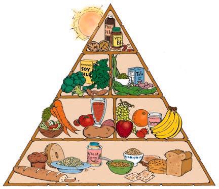 Piramide nutrición vegana
