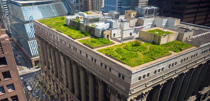 Sus múltiples beneficios para el bienestar físico y anímico hacen que se incorporen en edificios públicos o viviendas. ¿Qué son los techos verdes? ¿Cómo es su funcionamiento? En está nota te contamos lo detalles de este tipo de construcción.