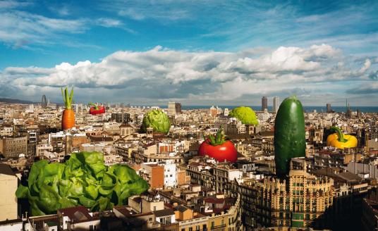 Huertos Urbanos Comunitarios en Barcelona