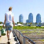 Huertas Urbanas Comunitarias