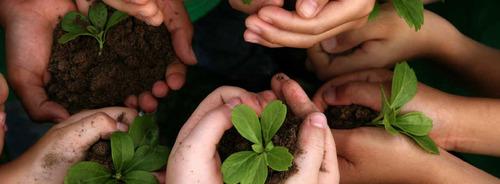 7 ideas ecológicas para hacer con los niños