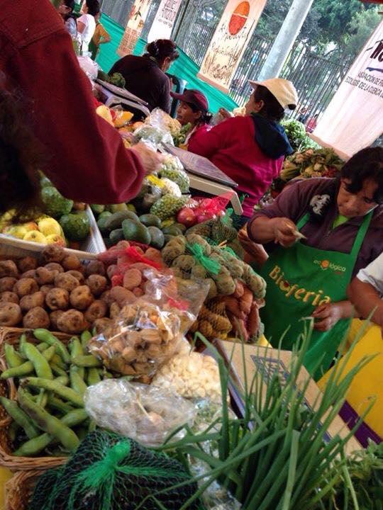 Frutas y verduras Orgánicas de Peru