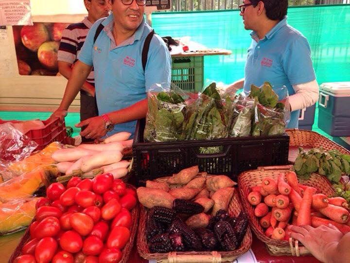 Almacenar Frutas y Verduras Orgánicas