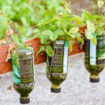 5 ideas para reutilizar botellas de Plástico