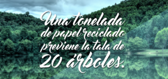 Reciclado Industrial de papel