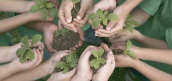 7 actividades para cuidar el ambiente desde la escuela