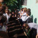 La importancia de la huerta en la escuela