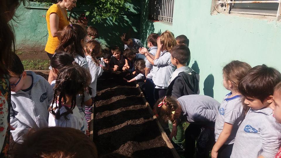 Fomenta la educación Ambiental