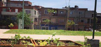 Green Guerillas: revolucionarios que luchan por ciudades más verdes.