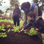 La experiencia de Cultivar en Grupo